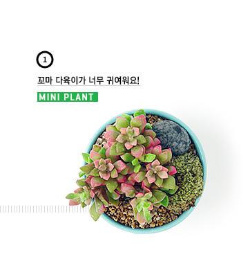 [2014]���̵� - ������� #01